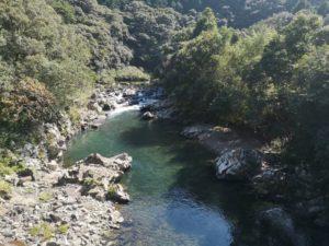 ミニベロ遍路 足摺岬〜三原村の景色