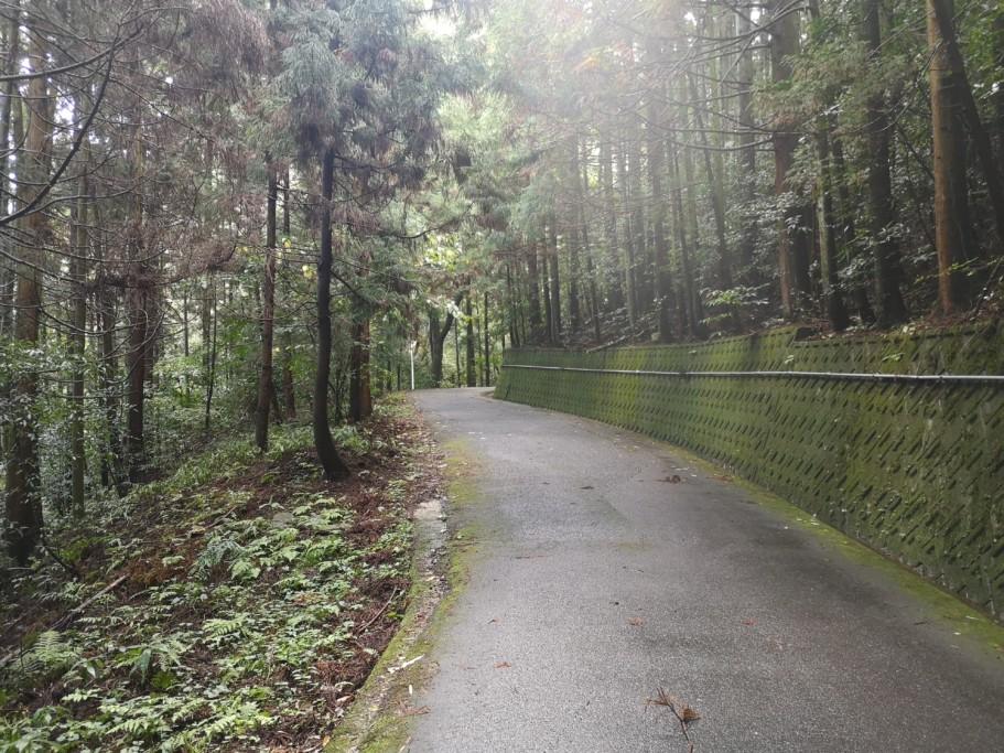 ミニベロ遍路 三角寺への道