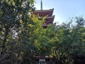 ミニベロ遍路 志度寺五重塔