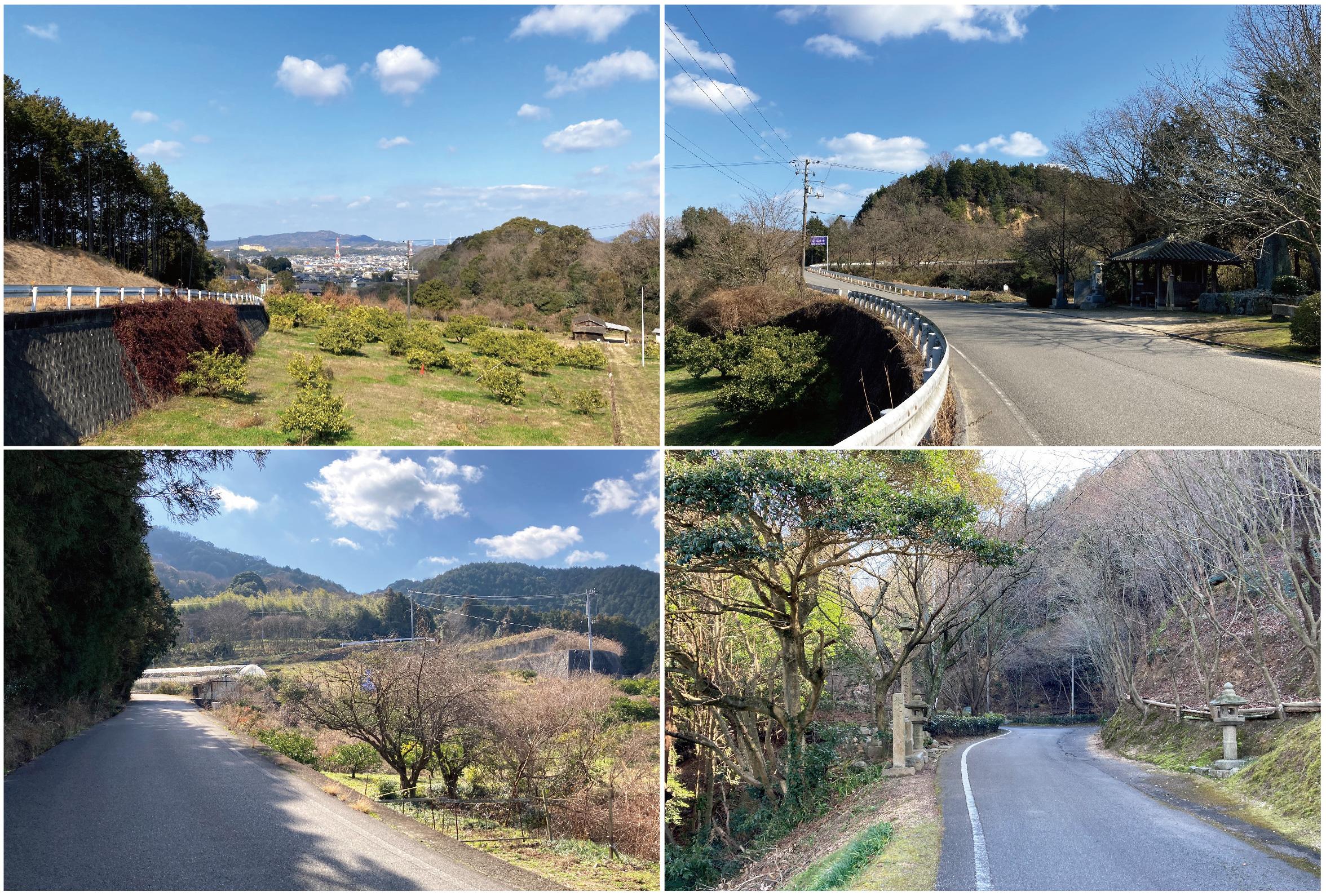 仙遊寺までの道